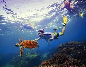 dmc-australia-family-reef-uniq-travel 290