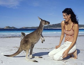dmc-australia-luxury-kangaroo-nature-uniq-travel-290