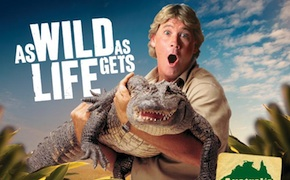 Incentive travel delegates meet crocodiles at the Steve irwin's australia zoo