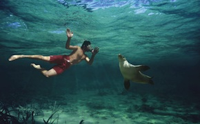dmc-australia-family-seals-swim-uniq-luxury-travel