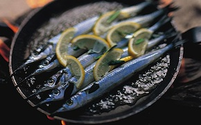 dmc-australia-luxury-travel-bbq-cooking-uniq