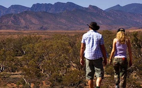 dmc-australia-nature-flinders-outback-uniq-travel