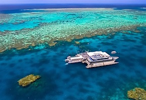 In Australia incentive travel delegates enjoy snorkelling Great Barrier Reef with destination management company cairns, UNIQ Travel Australia