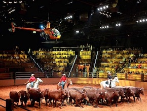 In Australia, on the Gold Coast Incentive Group enjoy Australian Outback Spectacular dinner and show with dmc Brisbane, UNIQ Travel & Incentives Australia