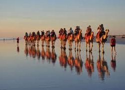 australia-travel-incentive-camel-ride-