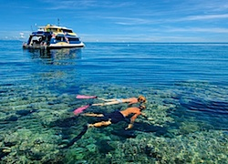 australia-travel-incentive-great-reef-snorkel