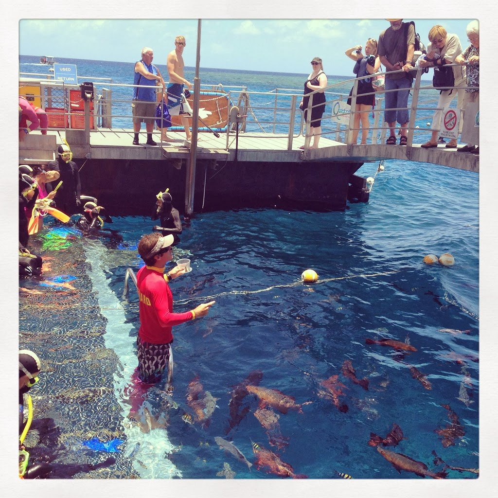 Incentive travel activities in Cairns, Port Douglas and the Great Barrier Reef with UNIQ dmc Australia