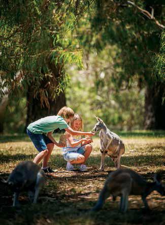 dmc-australia-adlaide-uniq-incentive-travel-south-australia