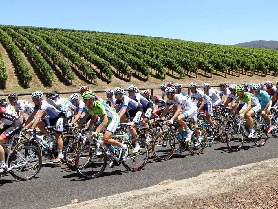 dmc-australia-cycling-tour-australia-adelaide-incentive-travel-australia-uniq