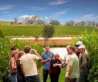 One day trip to Yarra Valley organised for incentive travel delegates by UNIQ DMC Melbourne