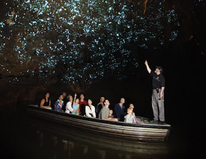 dmc-new-zealand-cave-waitomo-uniq-travel