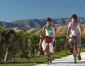 dmc-new-zealand-food-cycling-uniq-luxury-travel
