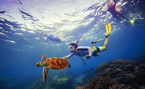 dmc-australia-family-snorkel-great-barrier-reef-uniq-luxury-travel