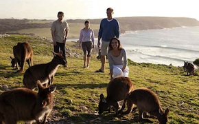dmc-australia-nature-kangaroo-island-uniq-travel
