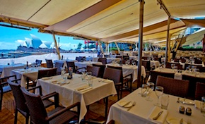 DMC Sydney presents Best dining spots with uninterrupted views of the Sydney Opera House and the Harbour for incentive travel in Australia - Wolfies