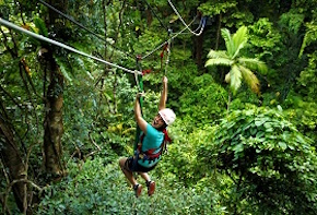 In Australia incentive travel delegates go Jungle surfing in the rainforest with destination management company cairns, UNIQ Travel Australia