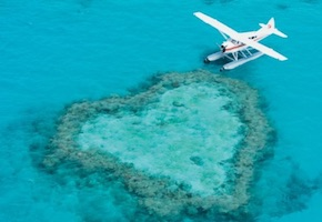 In Australia incentive travel delegates fly and snorkel in Great Barrier Reef with UNIQ Travel Australia, destination management company cairns